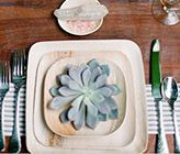 Disposable plates made from nothing but fallen leaves and water!