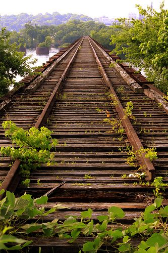 The Old Railroad Bridge over the Tennessee River from Sheffield, AL looking toward downtown Florence, AL