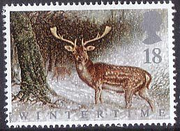 The Four Seasons. Wintertime Fallow Deer in Scottish Forest - 1992
