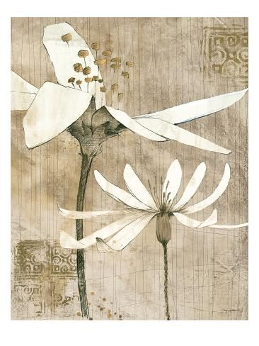 Pencil Floral Ii Premium Giclee Print Avery Tillmon Art Com In 2021 Art Prints Floral Wall Art Botanical Art