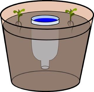 Homestead Survival: Planter DIY Water Reservoir For Potted Plants
