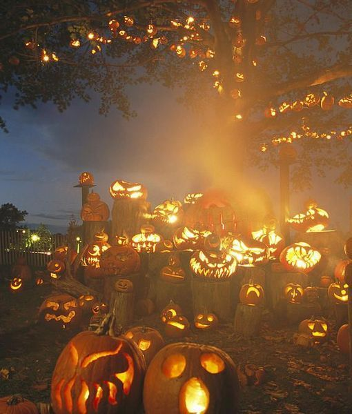 Grinning Lit Jack O Lanterns Surrounding And Filling A Tree Photographic Print Richard Nowitz Allposters Com Halloween Haunt Vintage Halloween Samhain Halloween