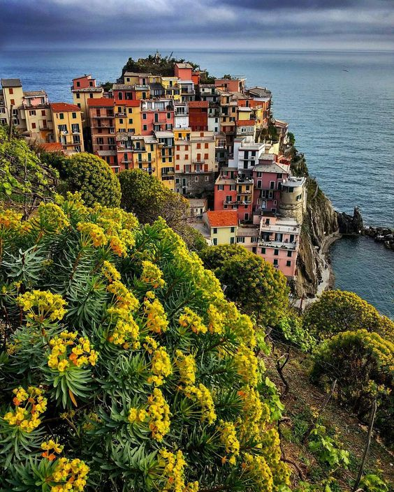 Spring in Manarola. 1 of the 5 wonderful villages of the Cinque Terre.