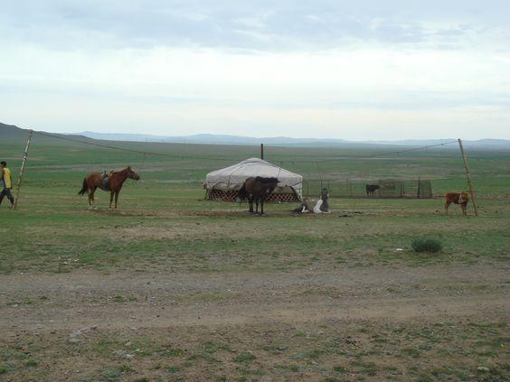 Mongólia (Ásia Oriental) - yurts, a morada dos nômades,cavalos, animal que integra a vida desses povos desde Genghis Khan