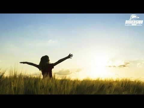 Alan Walker Euforia New Song 2019 Youtube Alan Walker News Songs Songs