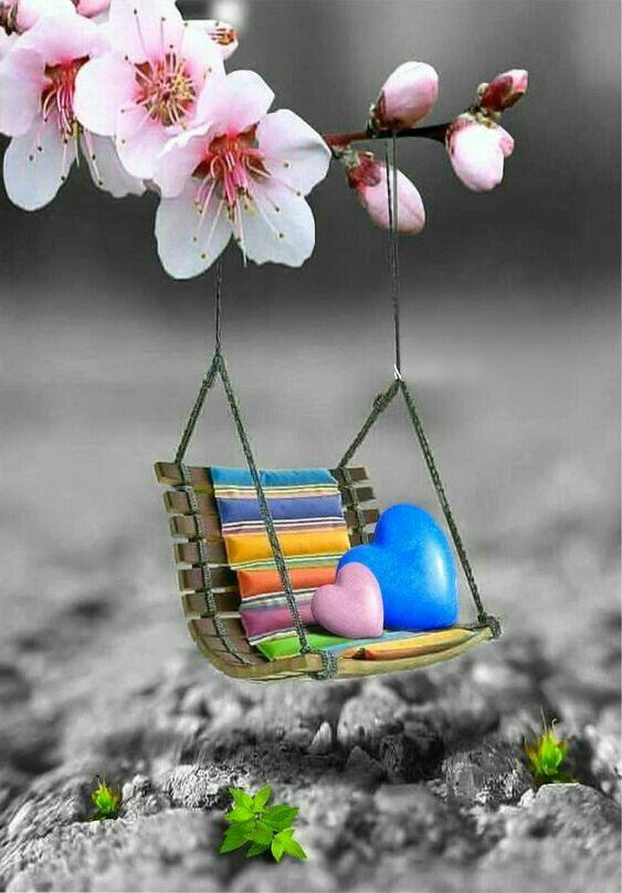 Pin By Mona Moni On Fantazi Cute Wallpapers Cute Photography
