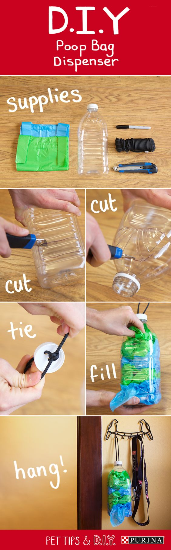 Use this step-by-step guide to make a simple DIY poop bag dispenser for your dog. You'll need a 2 quart plastic bottle, marker, box cutter or scissors, and poop bags. Step 1: Mark your areas to cut on the cap, top, and bottom of the bottle. Step 2: Cut along marked areas. Step 3: Tie a loop through the cap and knot it underneath. Step 4: Screw on the cap and fill your dispenser with poop bags. Now just hang your dispenser on the door, wall rack, or anywhere near your dog's leash…
