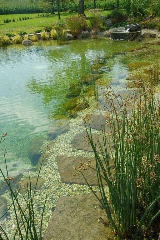 Natural Swimming Pool 15 Most Beautiful Ideas To Inspire You Recipegood Com Tuin Ideeën Natuurlijk Zwembad Vijvers