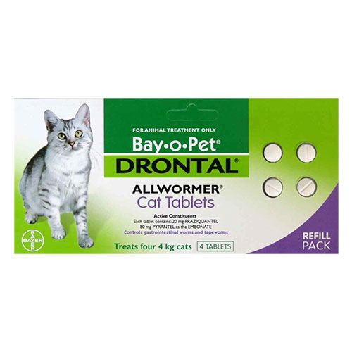 Drontal For Cats With Images Animal Treatment Cats Pets