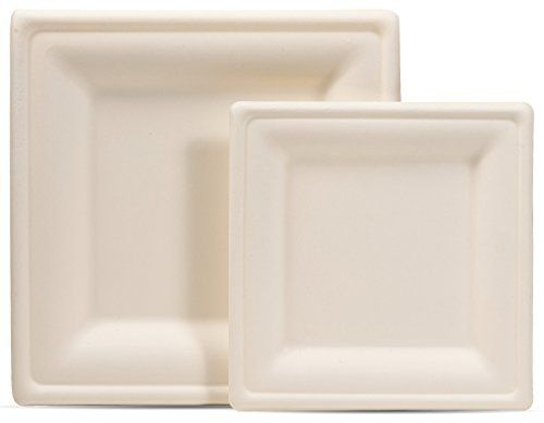 Amazon Com Select Settings 100 Count Compostable Eco Friendly Square Plates Includes 50 Dinner Plates And 50 Sala Square Plates Wheat Straw Dessert Plate