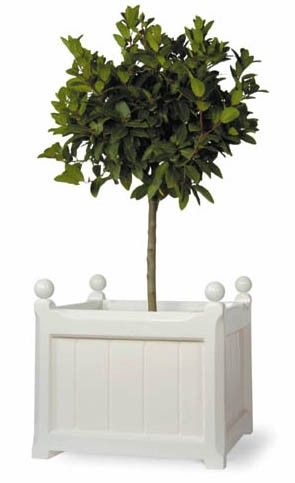Windsor Garden Planter in White-Available in Four Different Sizes