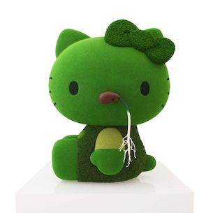 Hello Moss Kitty