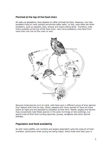 Here's a nice packet of information about owls and the food chain ...