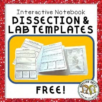 Science Scoring Rubric Student Laboratory Reports  Lab Reports