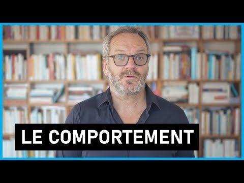Ma Video Sur Le Comportement Humain Mensonge Regard Des Autres Politique Youtube Comportement Humain Comportement Mensonge