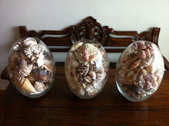 Seashell eggs.