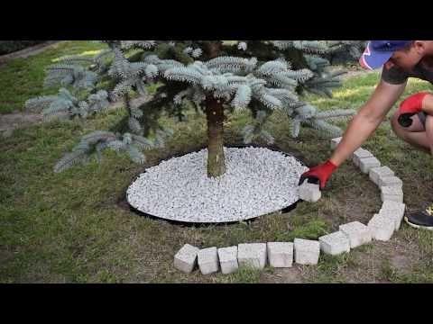 Przytulny Ogrod Cz 1 Jak Zrobic Maly Klomb Pod Drzewem Jak Ulozyc Kostke Brukowa Pod Drzewem Youtube Outdoor Decor Bird Bath Garden