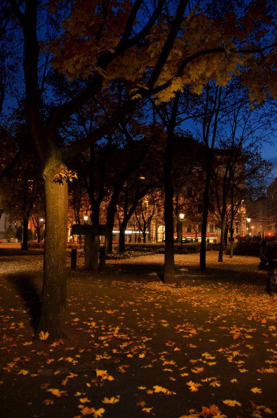 """""""Wien Street Garden"""" by MOhab Karram on 500px - Autumn at dusk in Wien Street Garden, Vienna, Austria"""