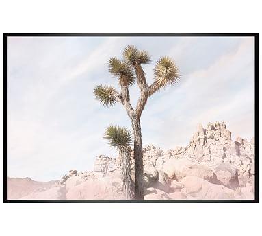 "Joshua Tree #5 Framed Print by Jane Wilder, 42 x 28"", Wood Gallery Frame, Black, No Mat"