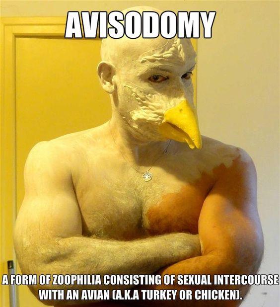 Image result for weirdest fetishes ever