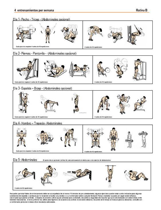 Rutina de ejercicios para aumentar masa muscular buscar for Gimnasio 9 de julio
