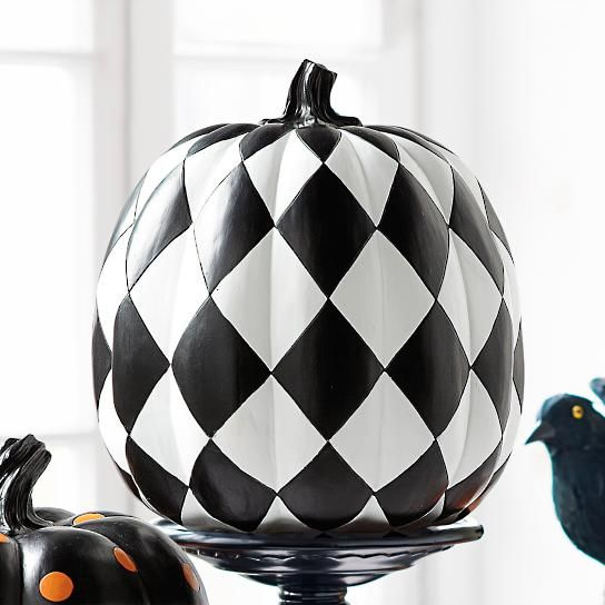 Black and White Harlequin Pumpkin
