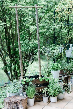 Planting Wooden Boxes Diy Trellis Three Kinds Of Love Affairs Space For A Cucumber And Herbs On 45 35 In 2020 Gartnern Auf Kleinem Raum Rankgitter Gitter Garten