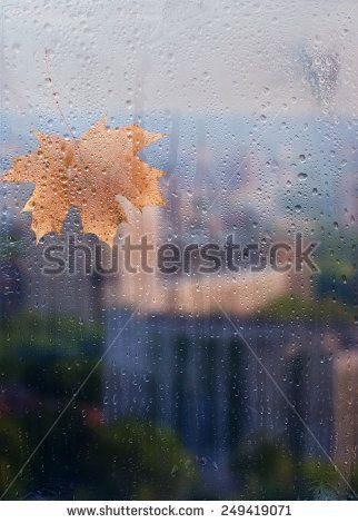 Through The Glass Drops Fotografía en stock | Shutterstock