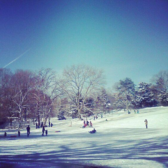 Cedar Hill, Central Park. Photo by nycdailypics