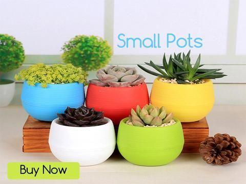 Pots And Planters Online In India Plant Pots For Sale Trustbasket Planting Flowers Flower Pots Plant Pots For Sale