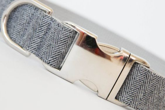 Our Everyday Collars might not have bowties or fancy flowers, but they're definitely stylish and constructed from the same high-quality materials