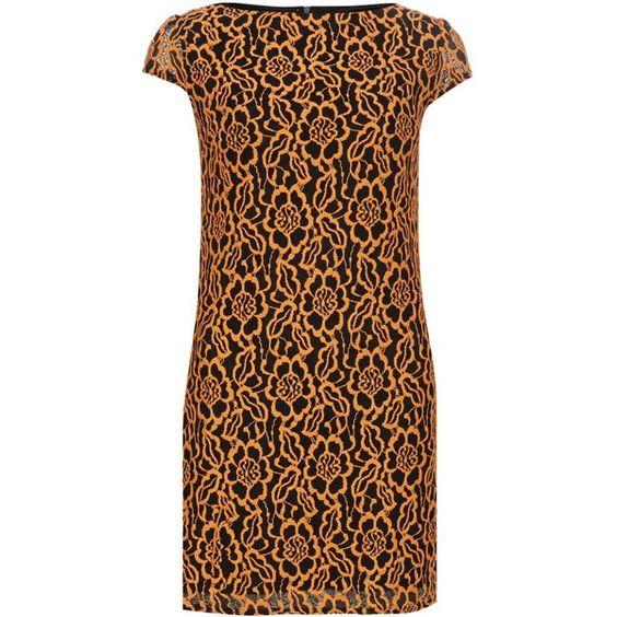 Amy Childs 'Freya' lace shift dress (¥5,300) ❤ liked on Polyvore featuring dresses, orange, lace shift dress, lace dress, orange dress, orange lace dress and brown dress