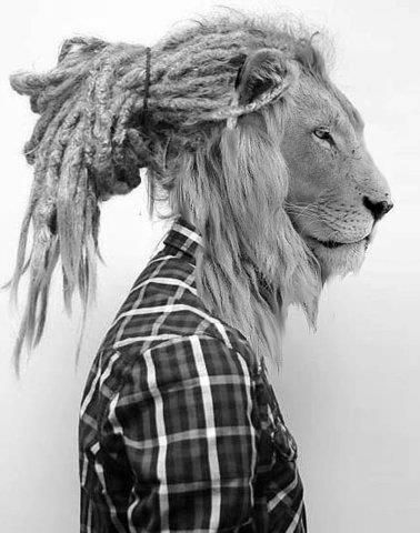 photo noir et blanc : Lion Man