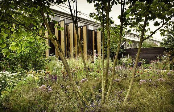 Wilson McWilliam Studio Cloudy Bay Sensory Garden.JPG