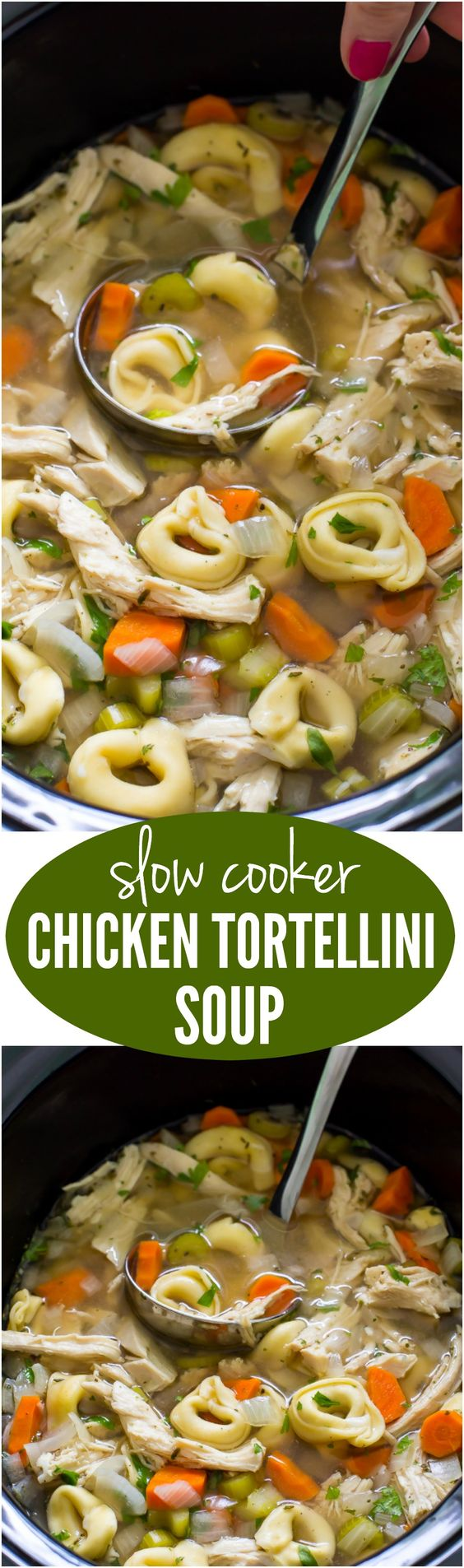 Super Easy Slow Cooker Chicken Tortellini Soup. Loaded with tons of veggies, shredded chicken and cheesy tortellini!: