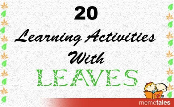 20 Learning activities with Leaves! Leaves can be used for sorting, learning maths and more...