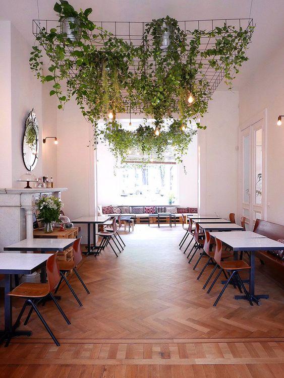 Decoração com verde, plantas. Jardim suspenso, quadrada, cadeira vermelha, luminária de parede, luz natural.  #decoracao #decor #details #casadevalentina #UrbanJungle