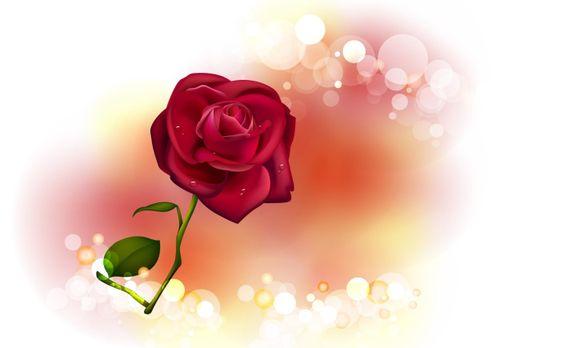 Valentine's Day - Catholic Friday