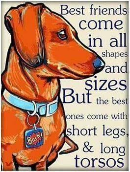 So true! Dachshunds = love!