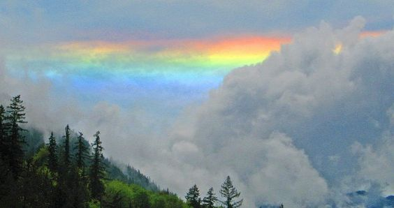 Rare photo of a horizontal rainbow at the Quilcene National Fish Hatchery, captured by Mike Elam