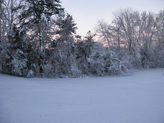 Prince Snow Farm