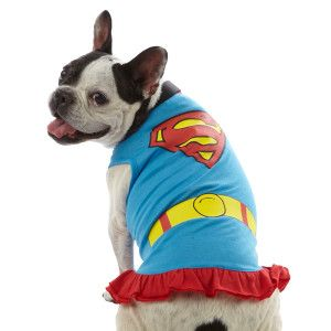 Top Paw™ DC Super Girl T-Shirt Dress for Dogs - PetSmart