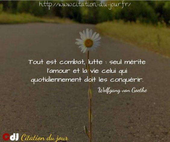 http://www.citation-du-jour.fr/citations-johann-wolfgang-vo…