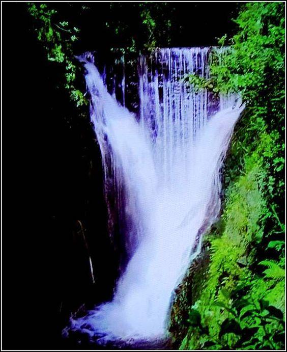 Chute d'eau la plus réputée du Plateau des Mille Étangs, sur la commune de…