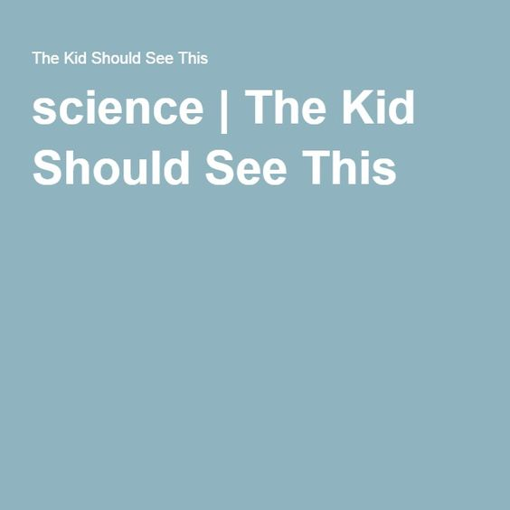 science | The Kid Should See This
