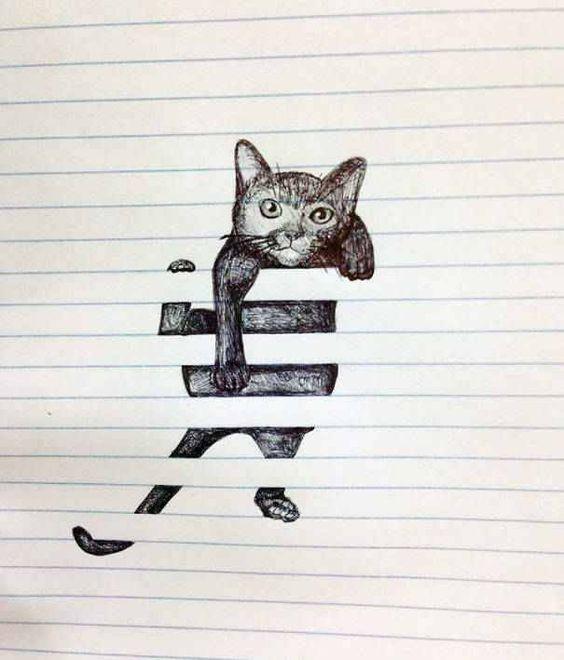 stoute kat