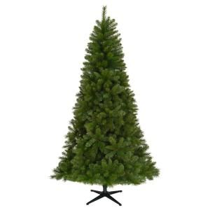 National Tree Company 6 Ft Frasier Grande Artificial Christmas Tree With Dual Color Led Lights Christmas Tree Pre Lit Christmas Tree Artificial Christmas Tree