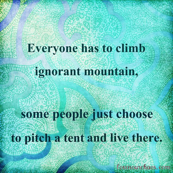 Everyone has to climb ignorant mountain, some people just choose to pitch a tent and live there.