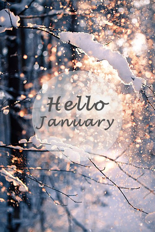 I always feel like January is sad and cold and depressing, this reminds me that it can be beautiful too, you just have to look for it.