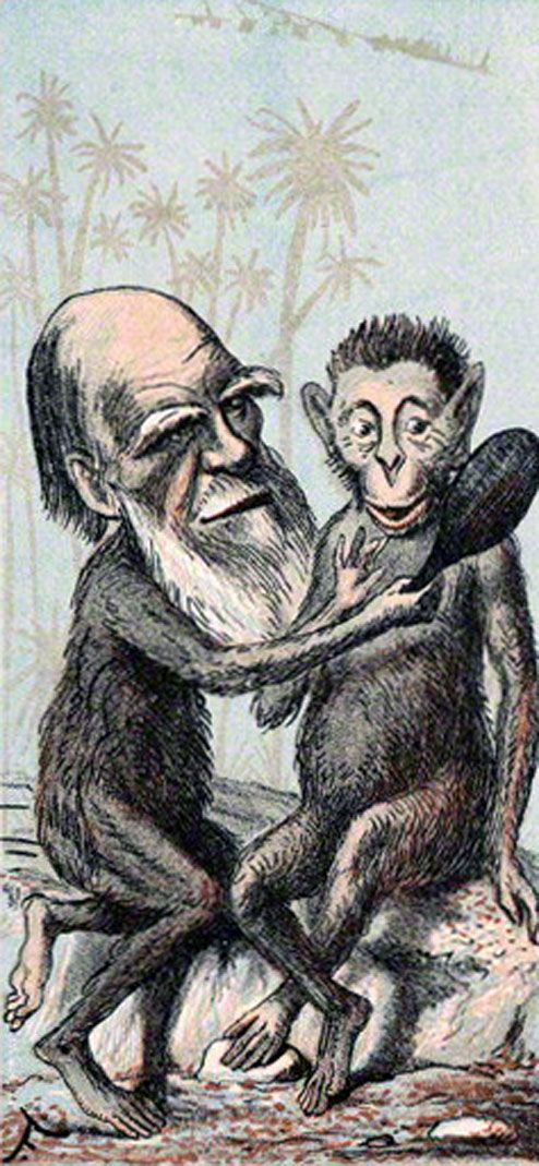 charles darwin in the 19th century essay Despite the fact that social darwinism bears charles darwin 19th and early 20th century social darwinism was 19th century reviews and essays darwin.